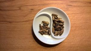 Kotimaiset kasviproteiinit ja hyönteiset ammattikeittiössä @ Axxell | Suomi