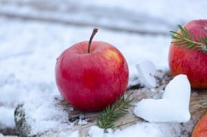 Ruoka-alan toimijoiden verkostoitumismatka, Gastro ja Ciderberg @ Helsingin Messukeskus | Helsinki | Suomi
