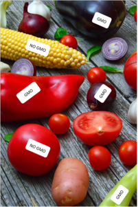 SIIRRETÄÄN MYÖHEMPÄÄN AJANKOHTAAN - Geenieditoinnin ja GMO:iden rooli tulevaisuuden elintarvikkeissa @ Vierailukeskus Joki