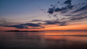 Fiskprodukter från skärgården idag och i framtiden webinar 4: Norsens potential / Kalatuotteita saaristosta tänään ja tulevaisuudessa -webinaarisarja osa 4: Kuoreen potentiaali