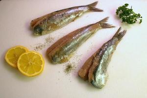 Fiskprodukter från skärgården idag och i framtiden webinar 3: Hälsoprodukter av vildfisk / Kalatuotteita saaristosta tänään ja tulevaisuudessa -webinaarisarja osa 3: Terveystuotteita luonnonkalasta