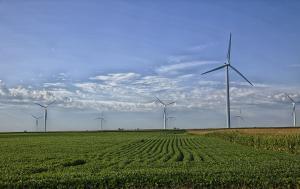 Uusiutuvaa energiaa ja energiatehokkuutta ruokasektorille -webinaari